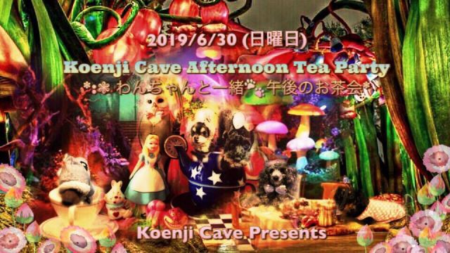 Koenji Cave Afternoon Tea Party *.゚わんちゃんと一緒 午後のお茶会*.゚
