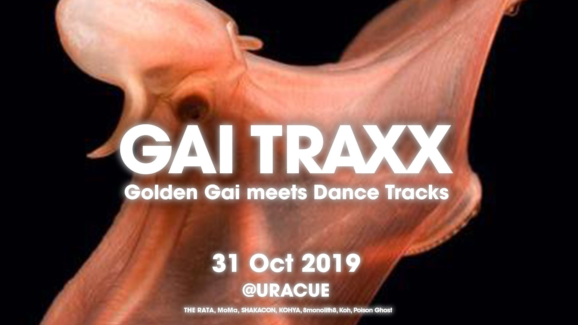 GAI TRAXX - Golden-Gai meets Dance Tracks【Halloween Night Party】