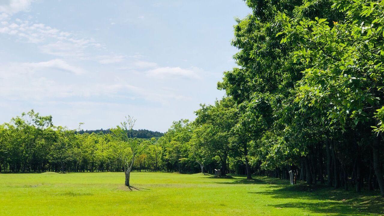 美しい「自然」「食」「音楽」を楽しむ野外イベント 「Grand VIWETY」初開催。 Jazztronik+柴咲コウ、SIRUPなどが出演