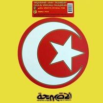 Joe T. Vannelli Project* Joe T Vannelli Project·Feat. Vlynn - Don't Bring Me Down